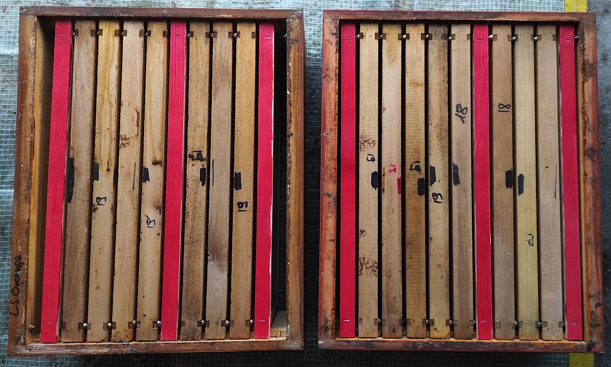 Die Futterkammer mit 4 Waben (links) ermöglicht seitlich eine gute Luftzirkulation.